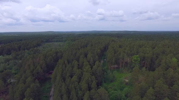 Aerial view of the forest with houses, paths and other buildings. Summer cloudy day