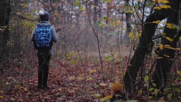 Thumbnail for A Child with a Satchel Behind Him Is Walking Through a Dark Forest with a Flashlight. Get Lost in