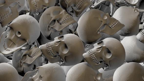 Skull Transition 02 Hd