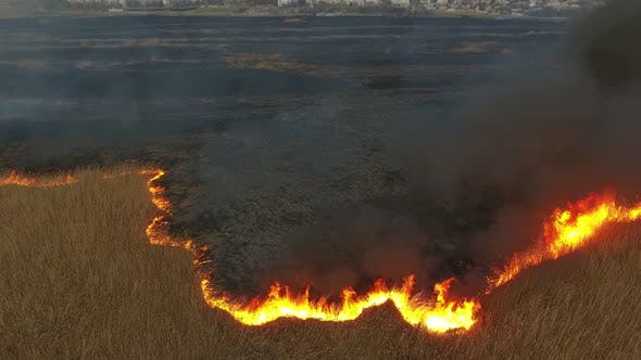 Thumbnail for Aerial Shot of Flaming Dnipro Basin Marshes Looking Black and Dead in Spring
