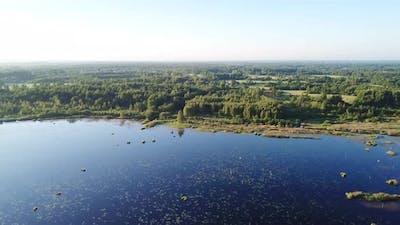 Swamp Near The Village Of Sverdlovo 04