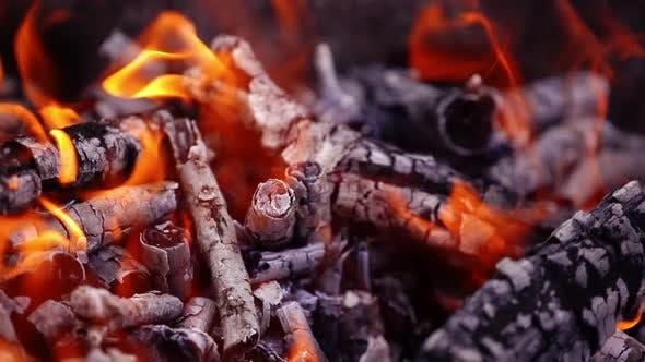 Thumbnail for Smoldered wooden logs background