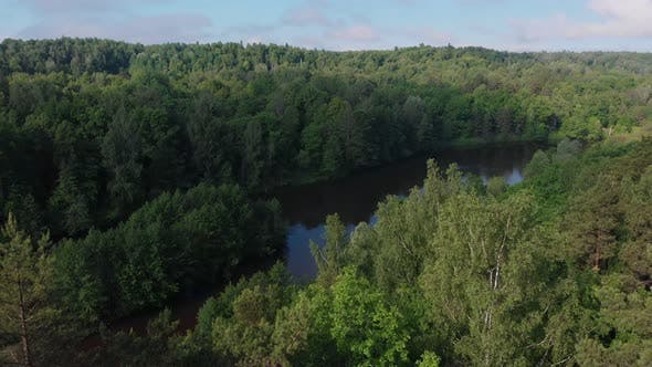 Thumbnail for Landscape of Green Nature - the River Stretches Near the Forest