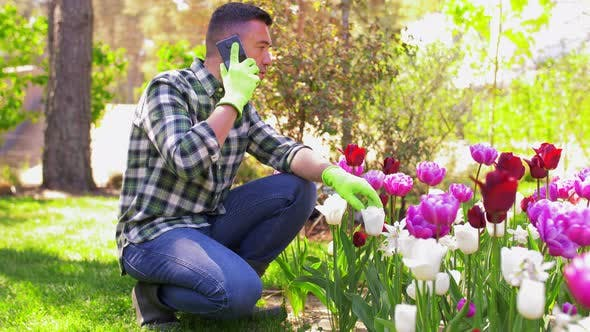 Thumbnail for Middle-aged Man with Smartphone at Flower Garden