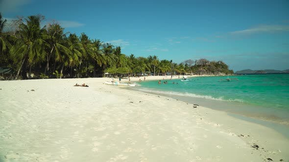 Torpical Island with White Sandy Beach
