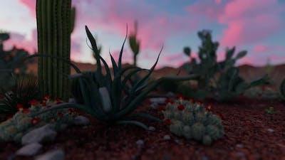Sunrise In The Desert Cartoon Style