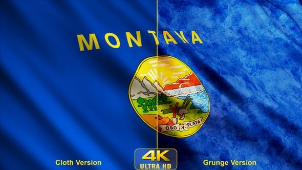 Thumbnail for Montana State Flags