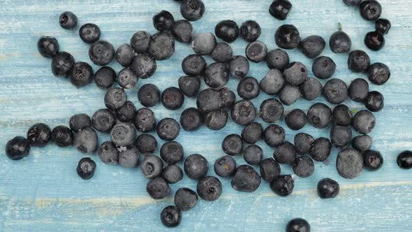 Thumbnail for Defrosting Frozen Blueberry. Timelapse of Unfreezing, Ice Melting of Fruits, Berries on Blue Surface