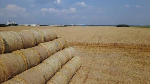 Das Stroh wird in einer Rolle gesammelt und in einer Pyramide in Stapeln gestapelt.