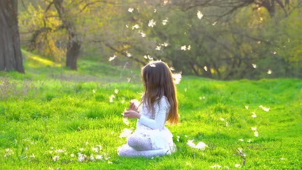 Cover Image for A Girl Sits on the Grass in the Park