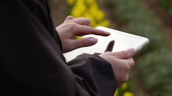 Thumbnail for Agriculture Technology Farmer Using Tablet at Flower Plantation