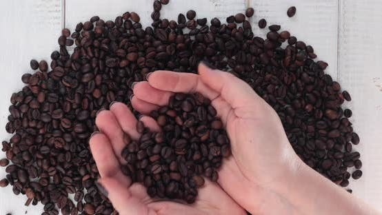 Thumbnail for Woman hands holding coffee beans