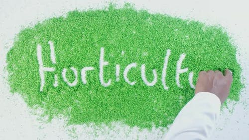 Green Hand Writing   Horticulture