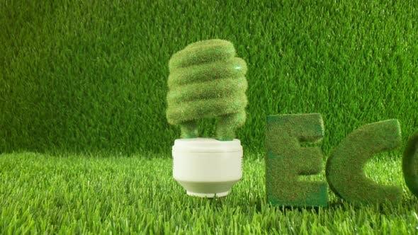 Thumbnail for Eco Glühbirne in grünem Gras