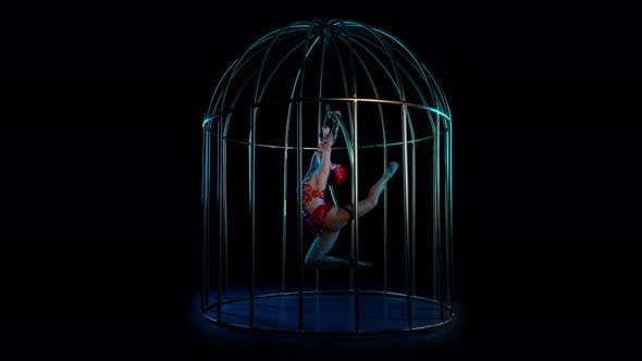 Thumbnail for Aerial Acrobatics on a Rotating Hoop in a Metal Cage. Black Background
