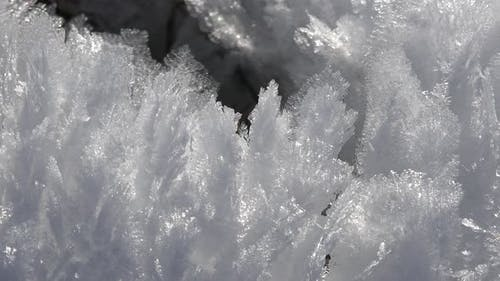 Sharp Rime Ice Crystals and Fragile Thin Hoar Frost in Sunny Winter Day