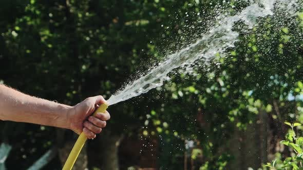 Stream of Water Spraying From Garden Hose