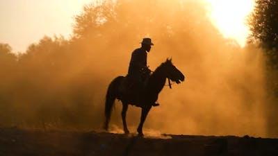 Cowboy At Sunrise