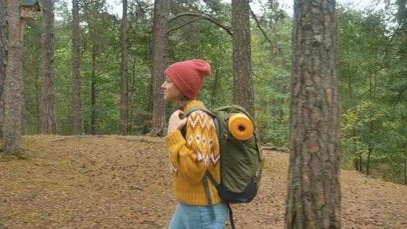 Thumbnail for Female Hiker Carries Backpack Walking Along Pine Forest