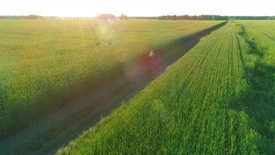 Thumbnail for Young Boy, That Rides a Bicycle Thru a Wheat Grass Field on the Old Rural Road