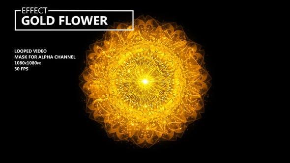 Thumbnail for Gold Flower
