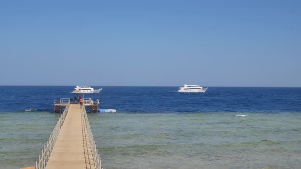 Thumbnail for Wooden Pier on Tropical Beach and White Yacht Sails in Blue Water of the Sea or Ocean