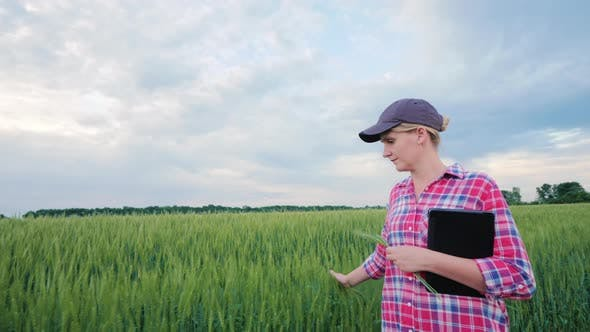 Thumbnail for Young Woman Farmer Palm Ears of Wheat