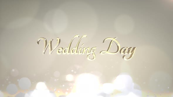 Text Wedding Day and motion white and gold circles