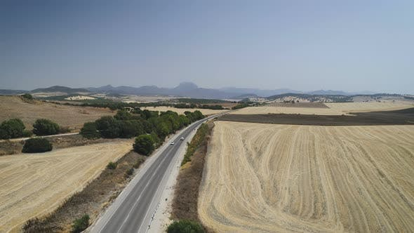 Thumbnail for Aerial View Of Car Driving On Road In Summer Landscape