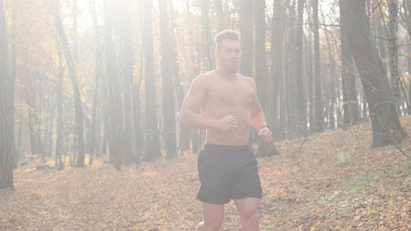 Thumbnail for Young Man Doing Exercises In The Forest.