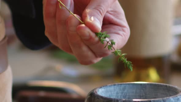 Thumbnail for Hands of Man Removing Leaves from Stem of Fresh Thyme