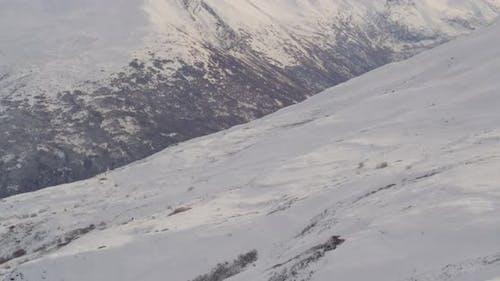 Luftaufnahme mit Hubschrauberaufnahme von Alaksan Wildnis über Berghang, Bäume, Drohne aufnahmen
