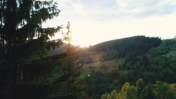 Thumbnail for Sunset Over a Mountain Forest