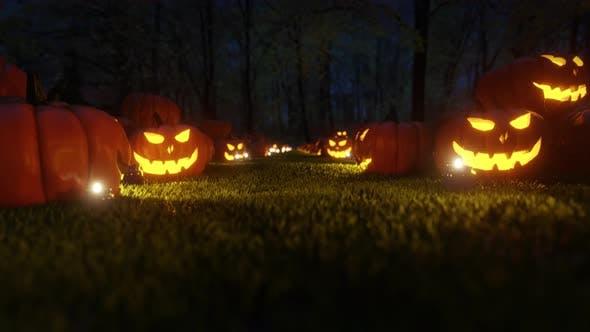 Thumbnail for Jack-o-Lantern And Pumpkins 4K