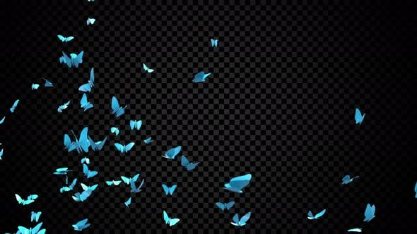 Thumbnail for Blue Butterflies