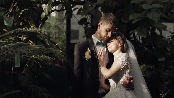 Cover Image for Newlyweds. Caucasian Groom with Bride in the Park. Wedding Couple. Happy Family