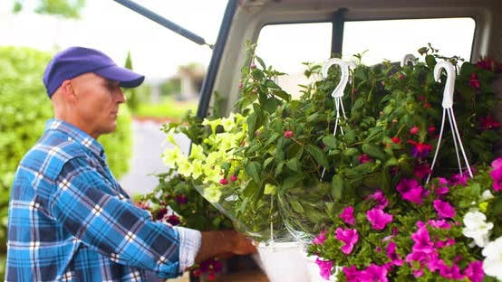 Thumbnail for Male Farmer Loading Van Trunk With Hanging Plants