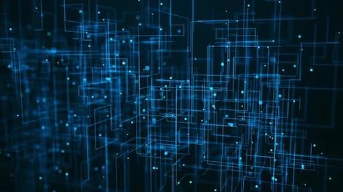 Server Network Trails
