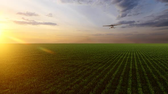 Thumbnail for Airplane Landing in Empty Field