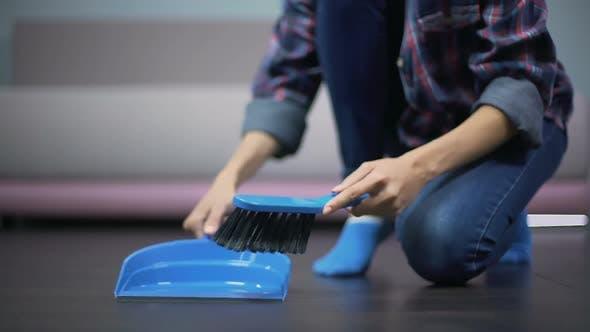 Thumbnail for Young Housewife Reinigung makelloser Boden mit Bürste und Kehrschaufel, tolle Hygiene