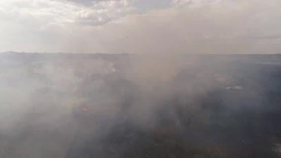 Aerial View Shot Through Smoke From Burning Field