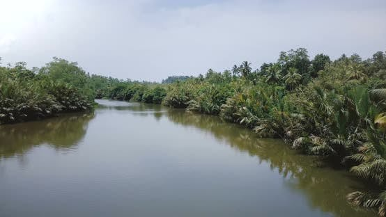Thumbnail for Drone Flying Over Amazing Wide Calm River Flowing in the Rainforest Jungle
