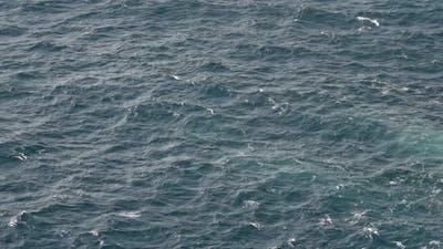 High Angle Shot Of Sea