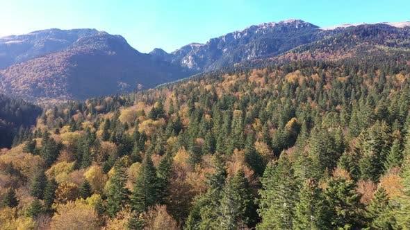 Aerial Mountain Landscape