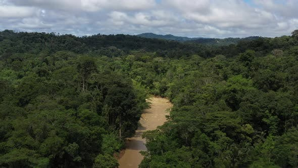 Thumbnail for Drone areal view flying just above the canopy of a rainforest along a large muddy tropical river