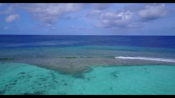Thumbnail for Aerial drone panorama of luxury tourist beach wildlife by aqua blue water and white sandy background