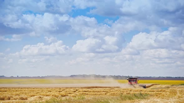 Thumbnail for Combine Harvester on Golden Field Under the Sky