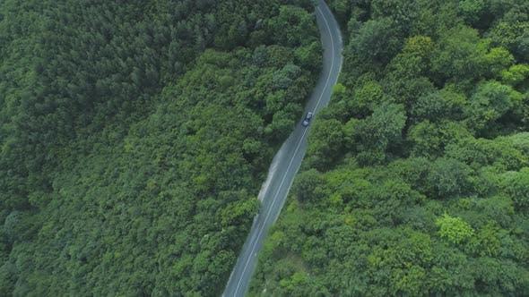 Thumbnail for Black Sedan Driving Slow on Winding Asphalt Road Through Green Woods