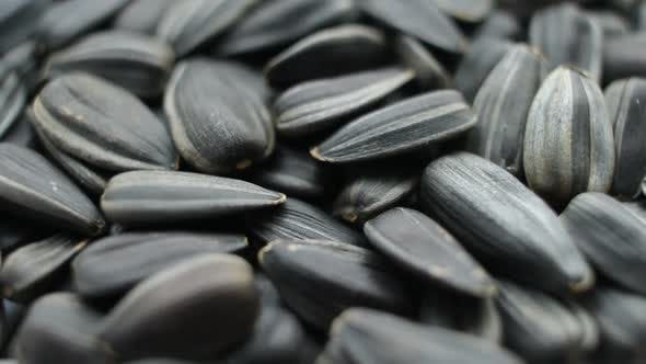 Thumbnail for Slow Rotation of the Heap of Sunflower Seeds