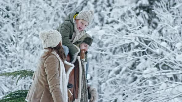 Cover Image for Family Carrying Christmas Tree and Laughing